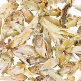 China Ya Bao Wild Tea Buds